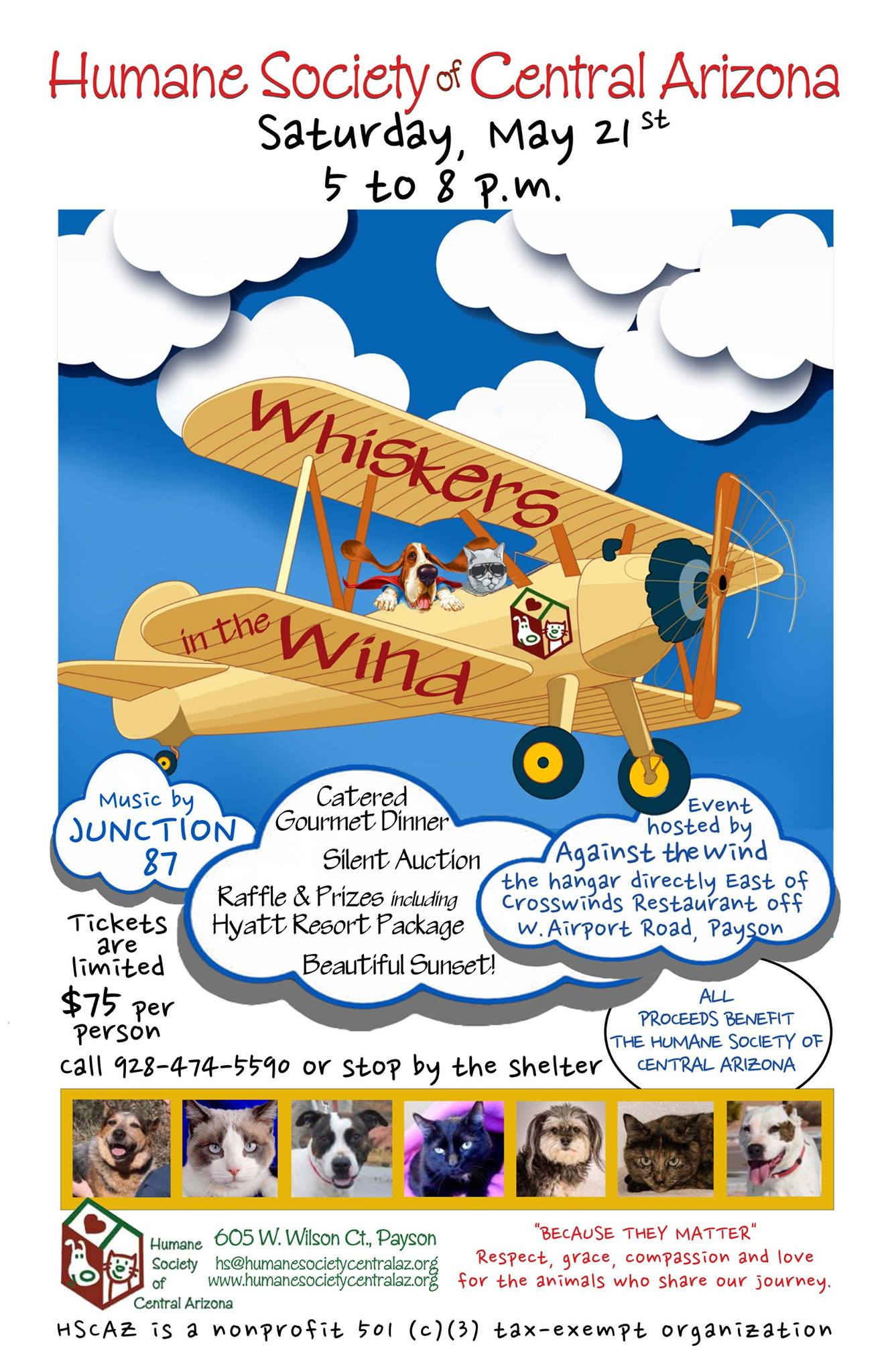 Whiskers In The Wind, Saturday May 21 2016